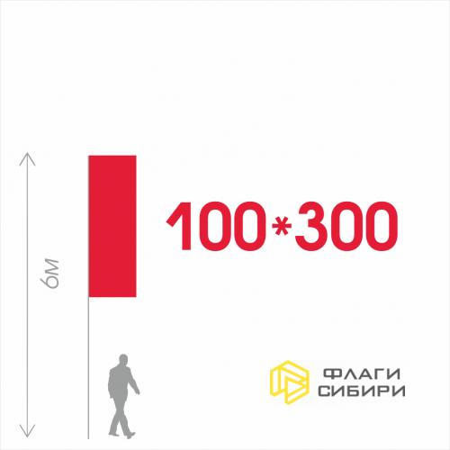 Флаг на заказ 100*300см