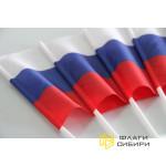 Флаг России 15*22 см, шелк 80г