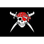 Пиратский флаг №11
